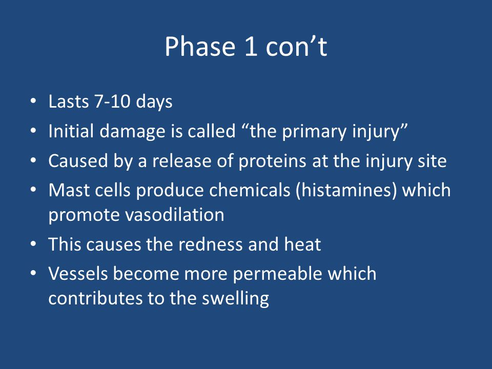 Phase 1 con't Lasts 7-10 days