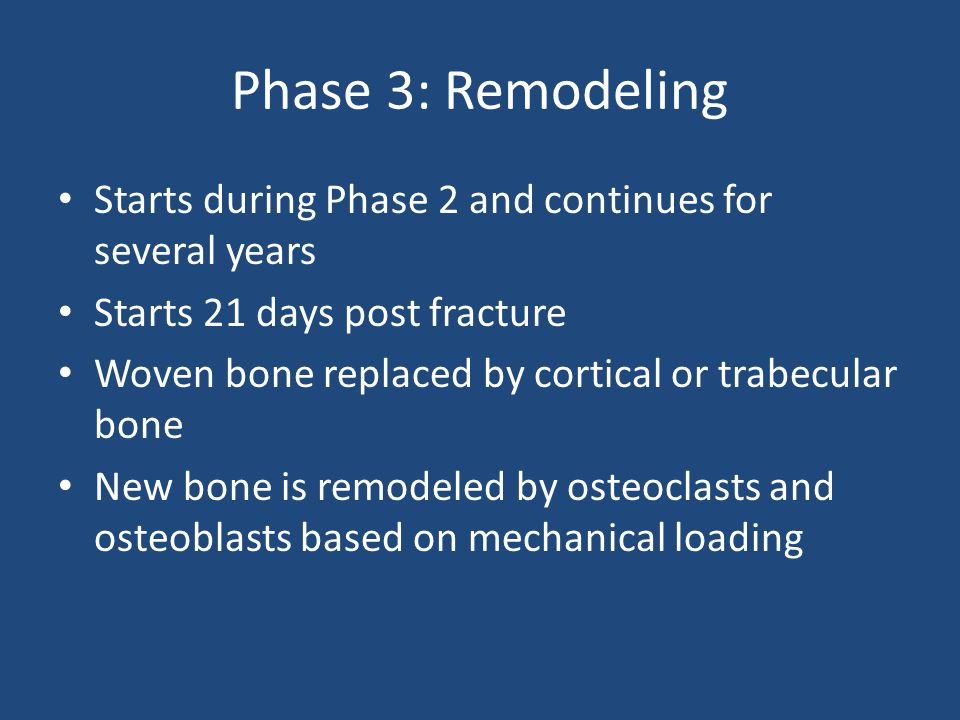 Phase 3: Remodeling Starts during Phase 2 and continues for several years. Starts 21 days post fracture.