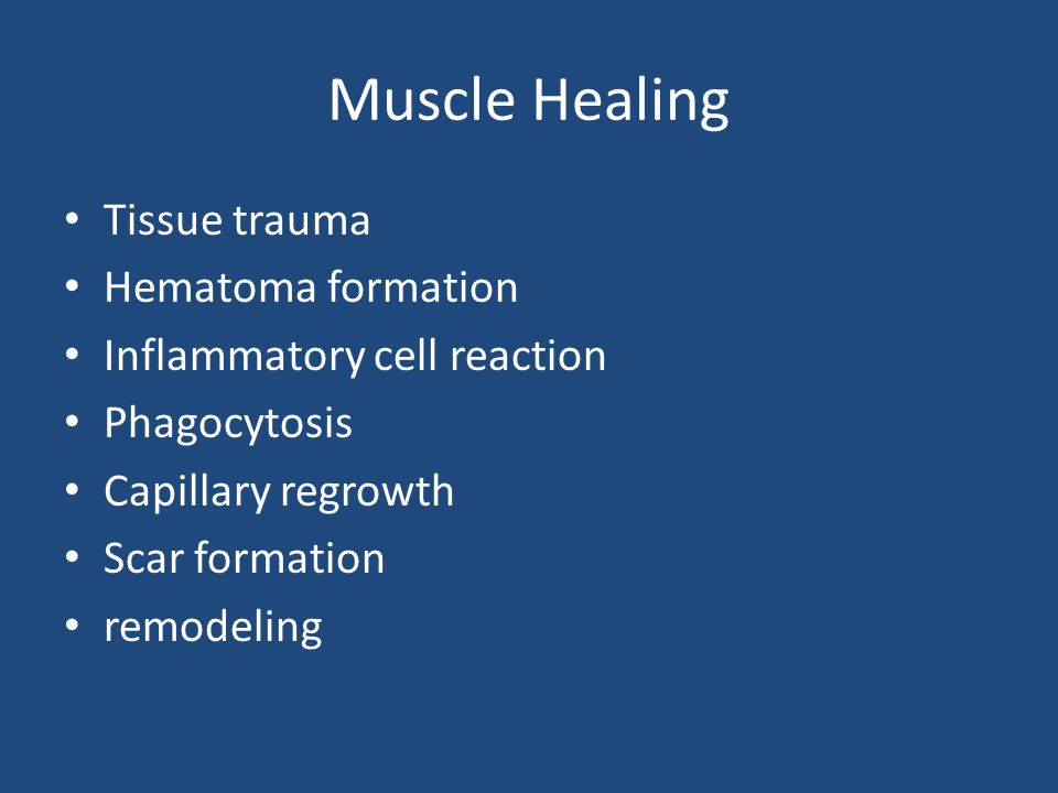 Muscle Healing Tissue trauma Hematoma formation