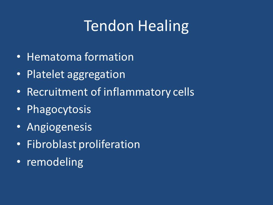 Tendon Healing Hematoma formation Platelet aggregation