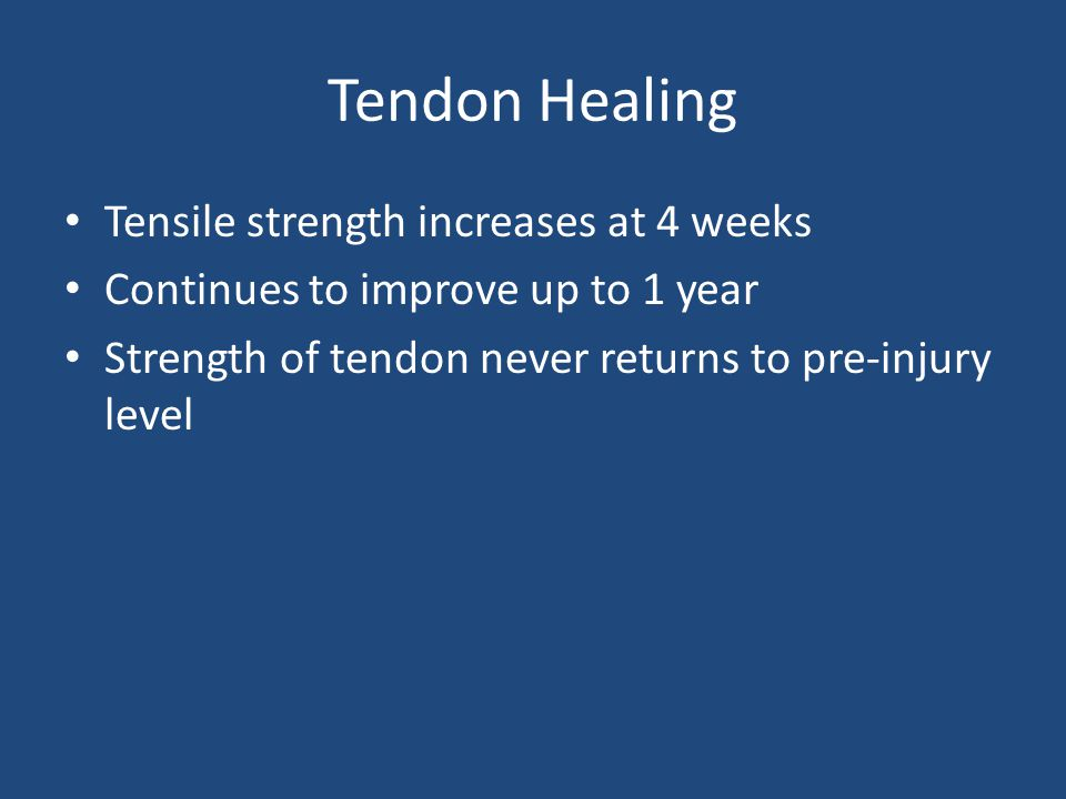 Tendon Healing Tensile strength increases at 4 weeks