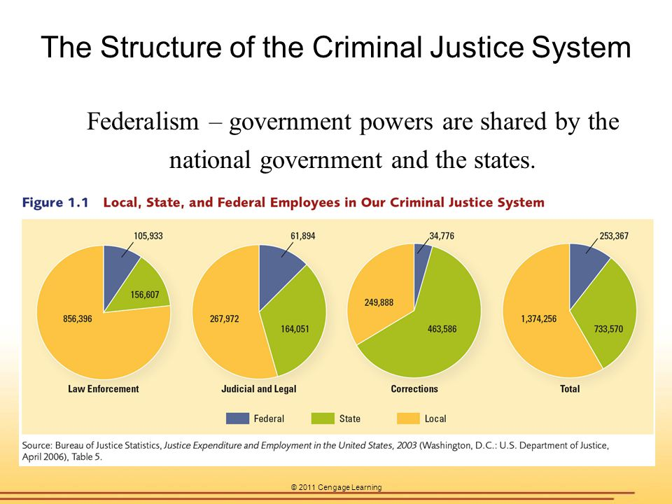 The Structure of the Criminal Justice System