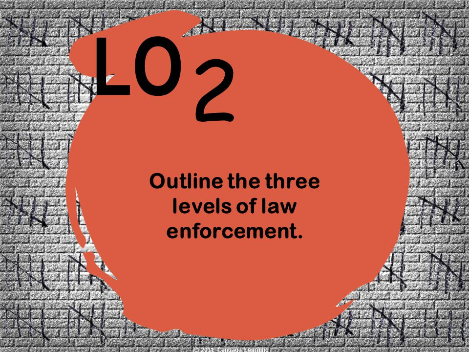 Outline the three levels of law enforcement.