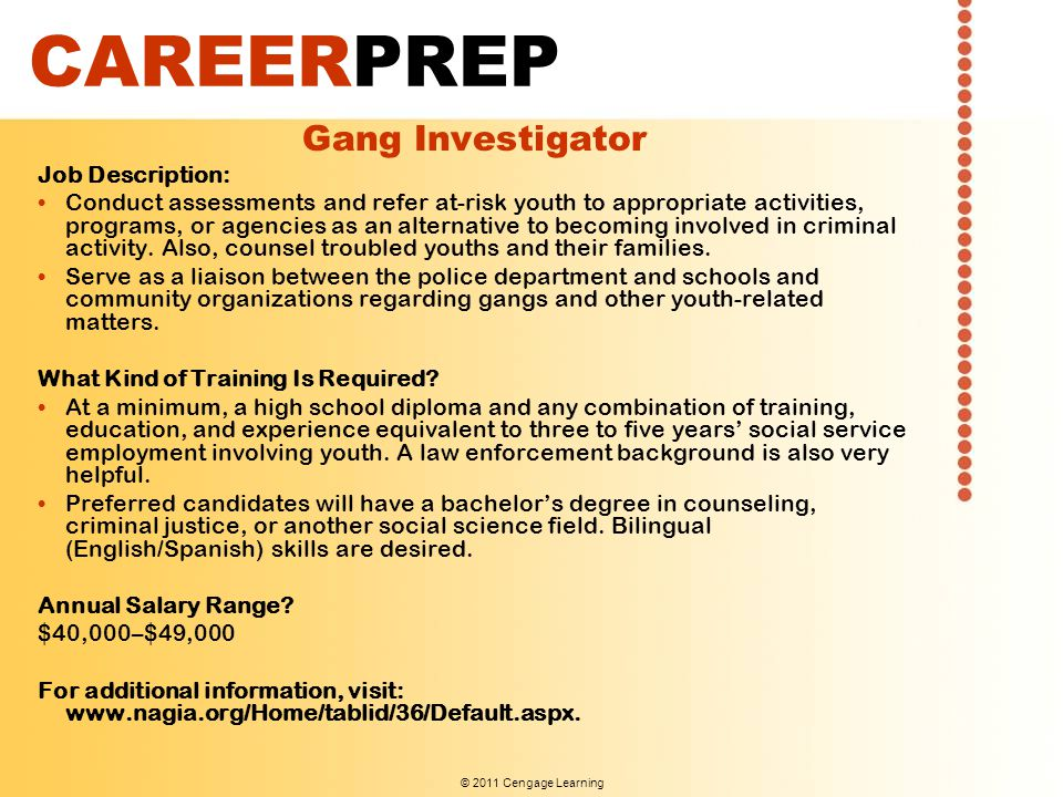 CAREERPREP Gang Investigator Job Description: