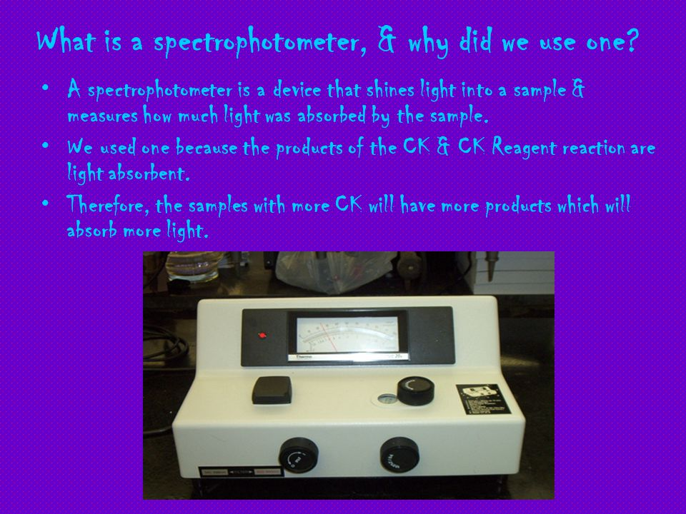 What is a spectrophotometer, & why did we use one