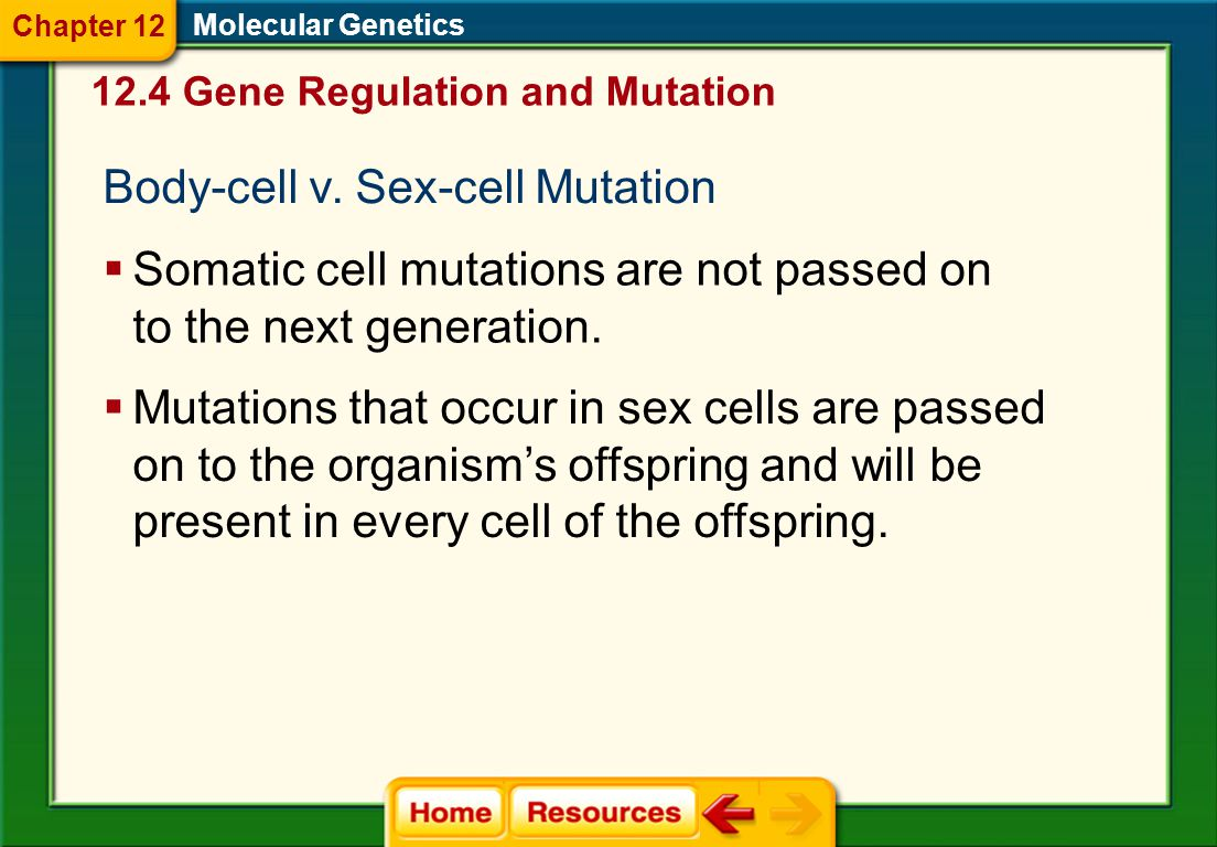 Body-cell v. Sex-cell Mutation