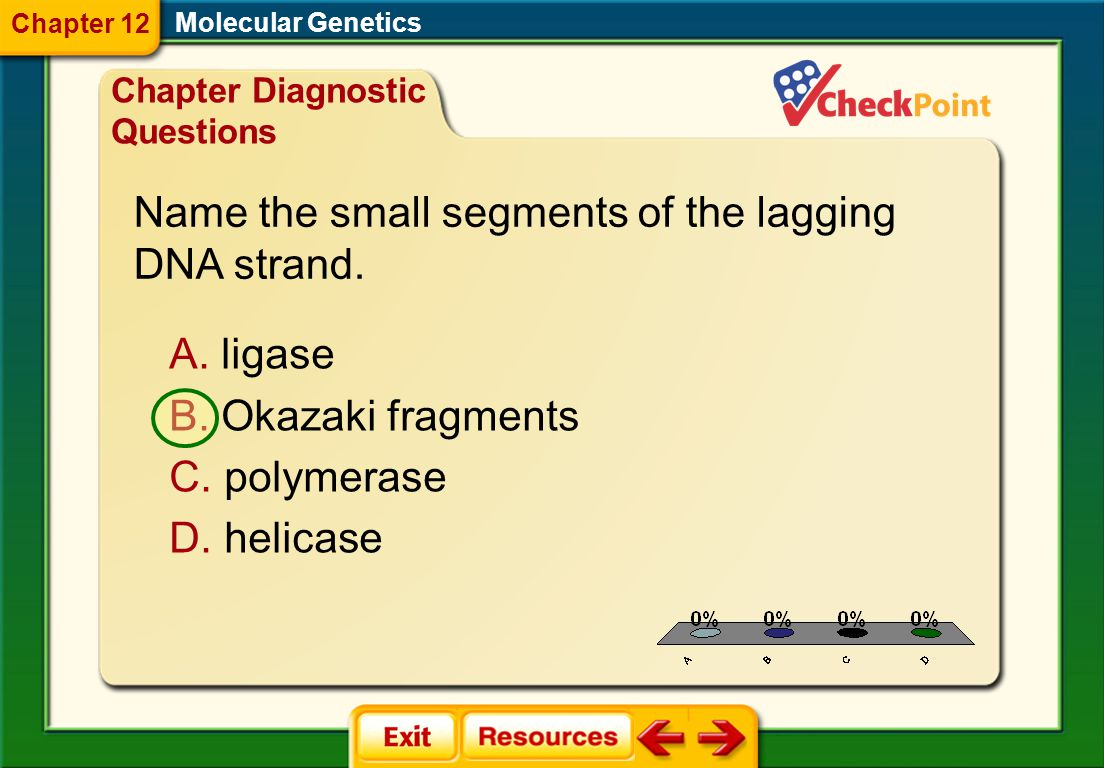 Name the small segments of the lagging DNA strand.