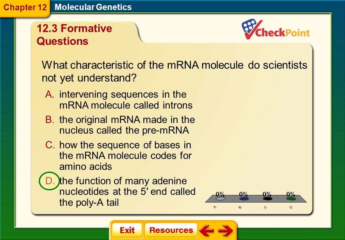 Chapter 12 Molecular Genetics. 12.3 Formative Questions. What characteristic of the mRNA molecule do scientists not yet understand