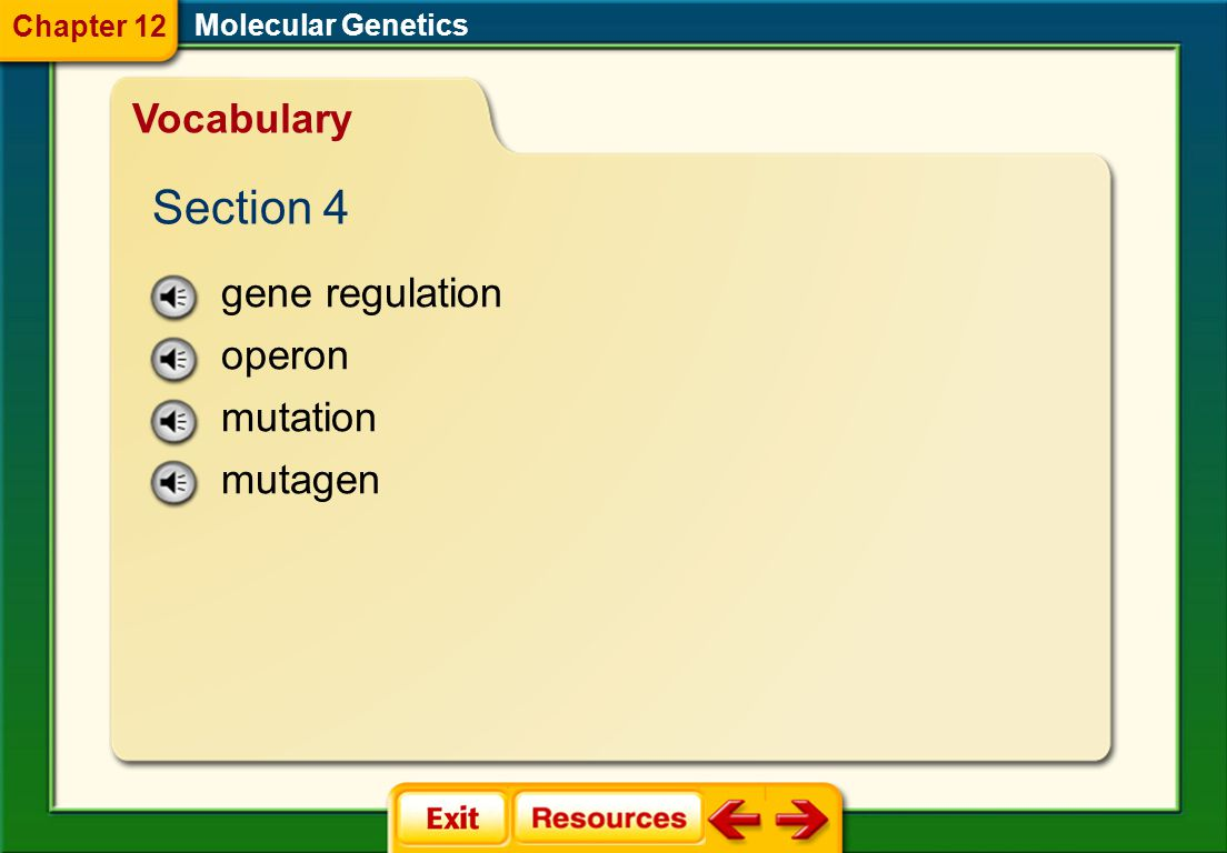Section 4 Vocabulary gene regulation operon mutation mutagen