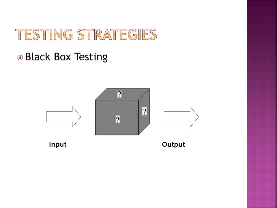 Testing Strategies Black Box Testing Input Output