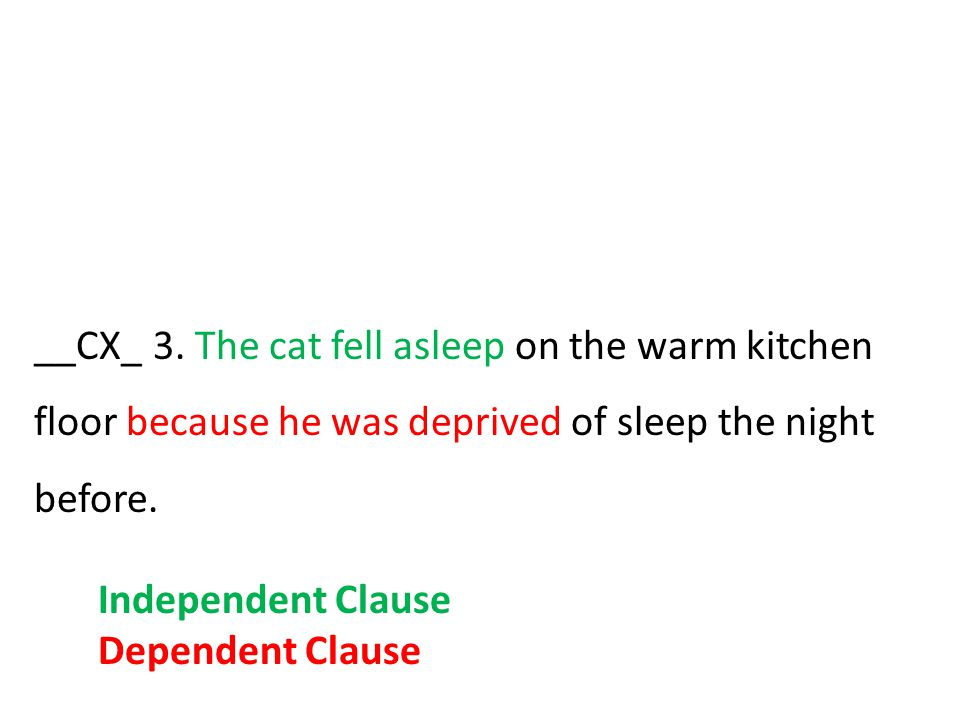__CX_ 3. The cat fell asleep on the warm kitchen floor because he was deprived of sleep the night before.