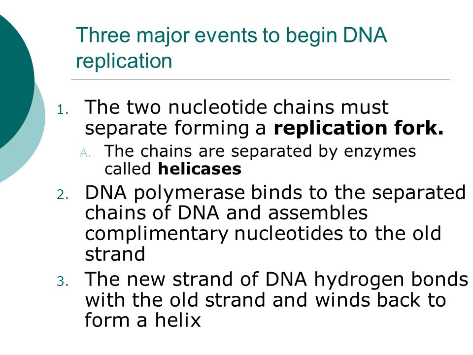 Three major events to begin DNA replication