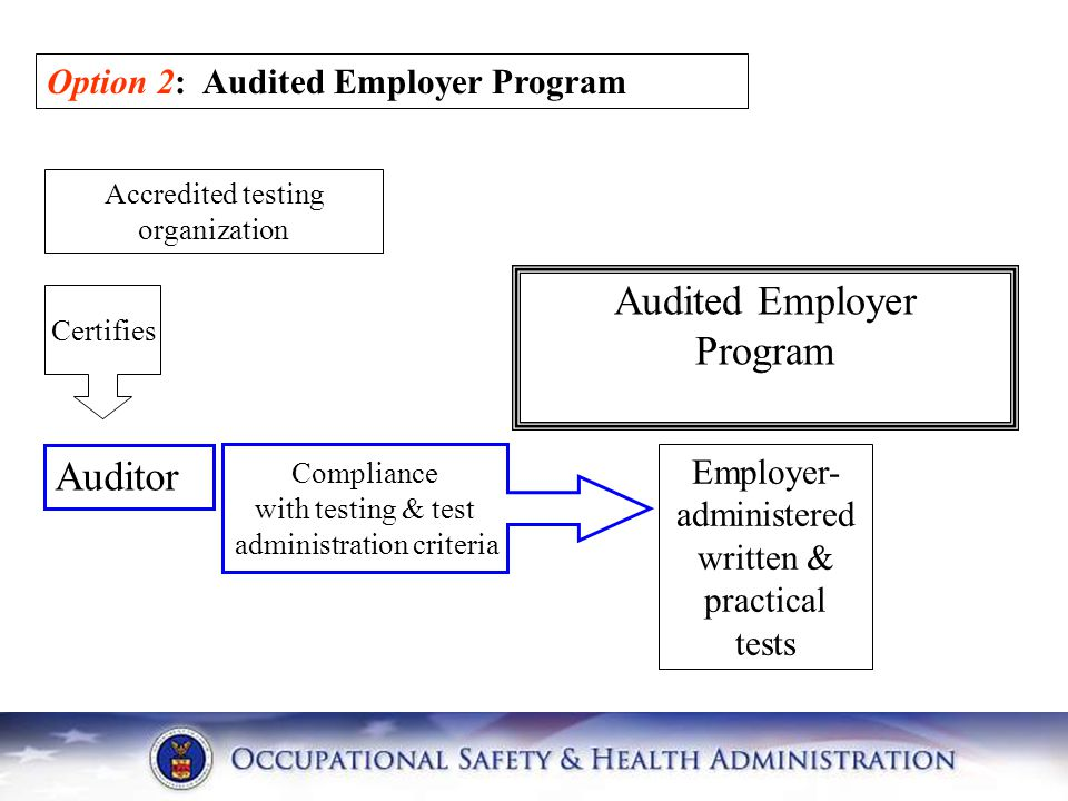 Audited Employer Program Auditor Option 2: Audited Employer Program