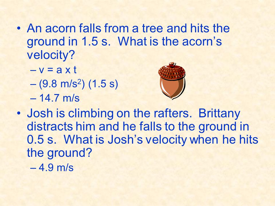An acorn falls from a tree and hits the ground in 1. 5 s