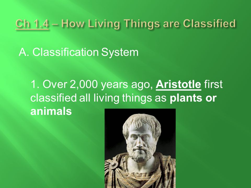Ch 1.4 – How Living Things are Classified