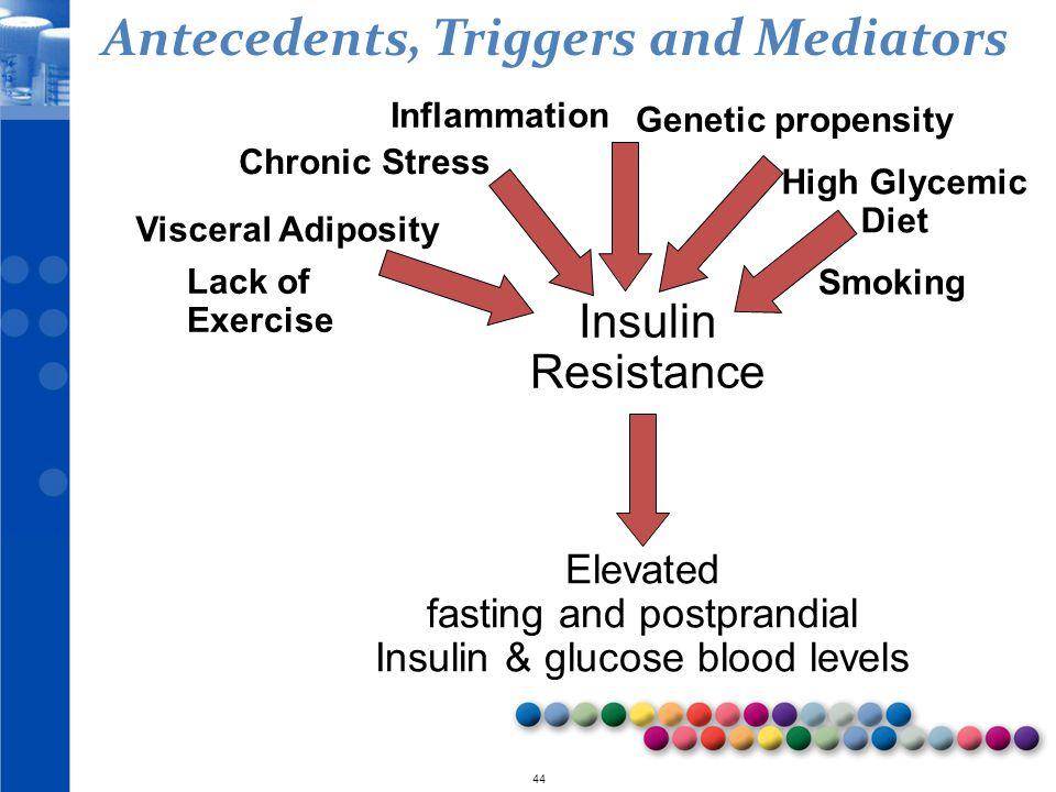 Antecedents, Triggers and Mediators