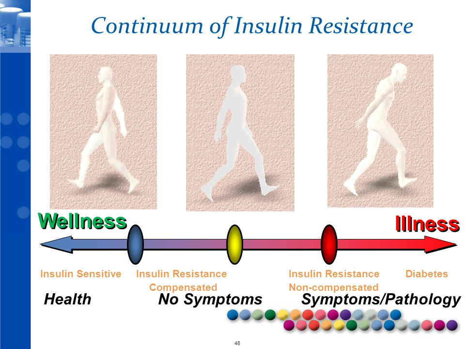 Continuum of Insulin Resistance