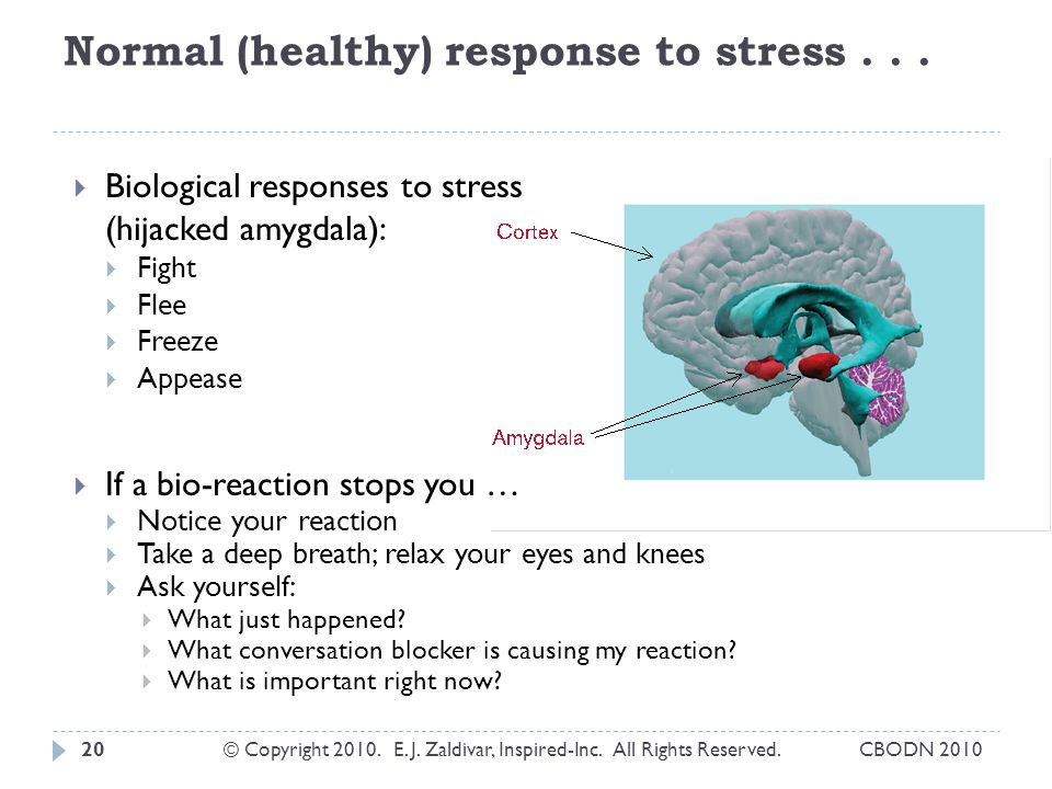 Normal (healthy) response to stress . . .