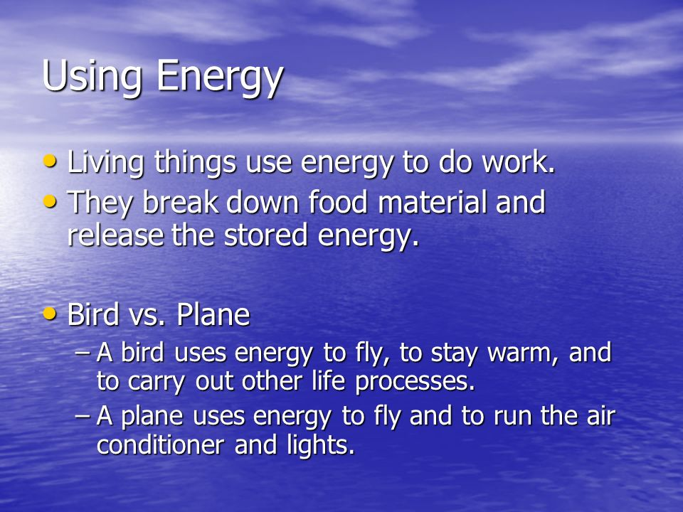 Using Energy Living things use energy to do work.