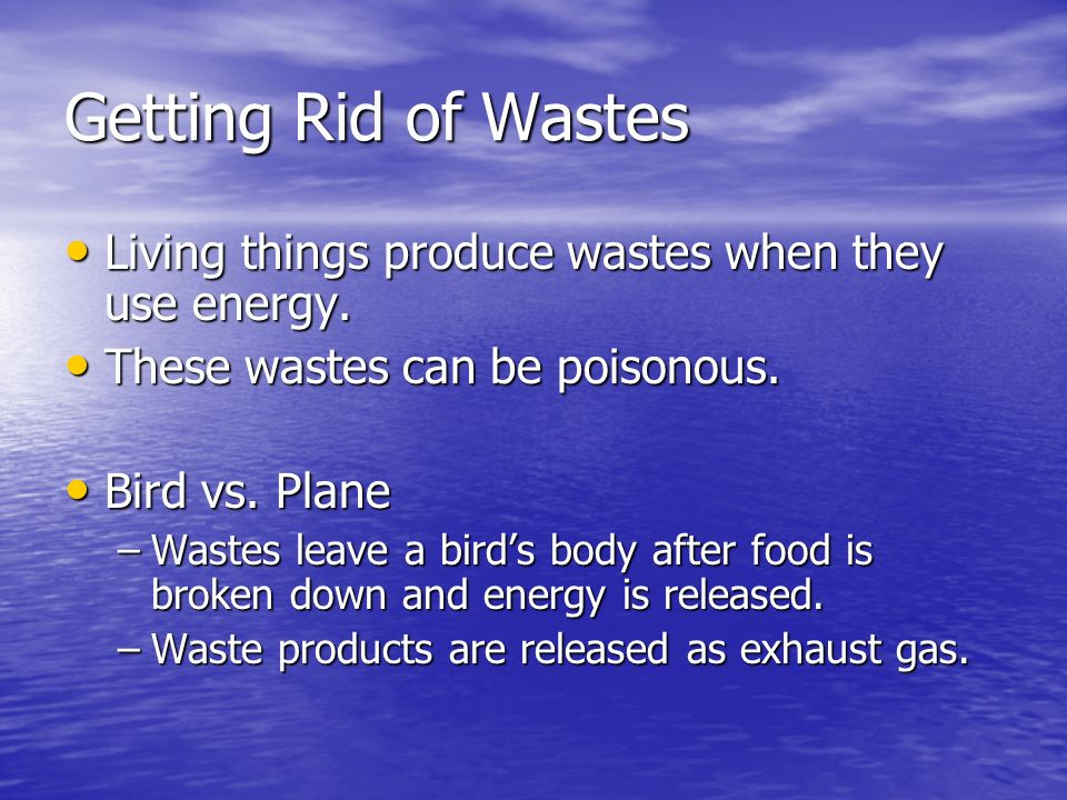 Getting Rid of Wastes Living things produce wastes when they use energy. These wastes can be poisonous.