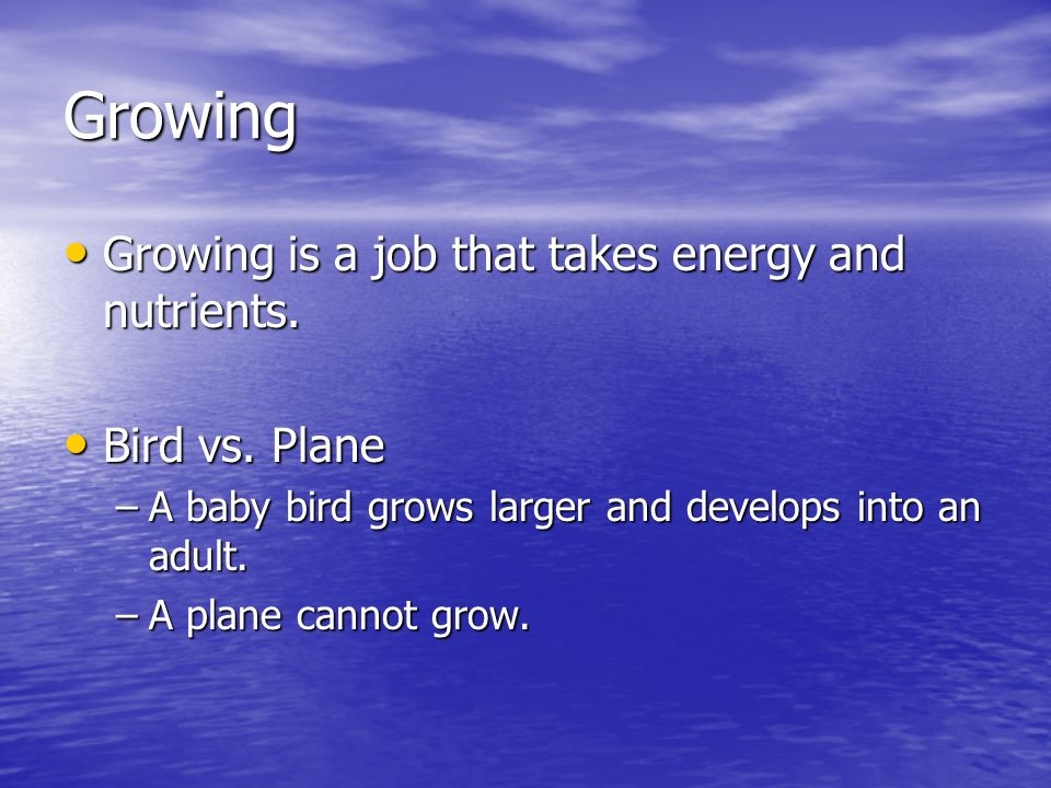 Growing Growing is a job that takes energy and nutrients.