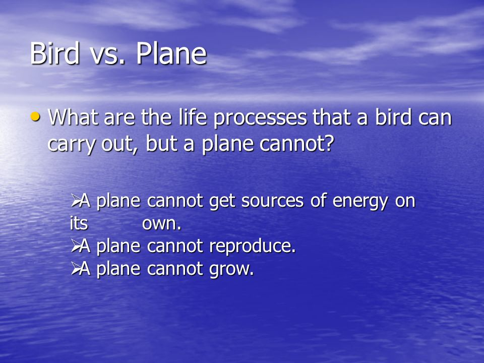 Bird vs. Plane What are the life processes that a bird can carry out, but a plane cannot A plane cannot get sources of energy on its own.