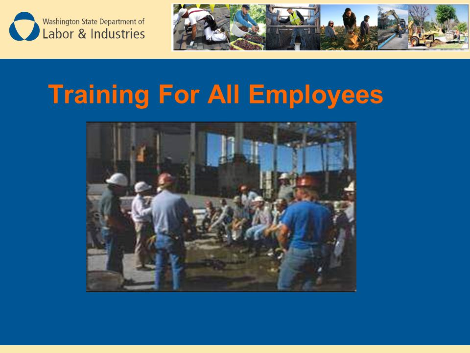 Training For All Employees