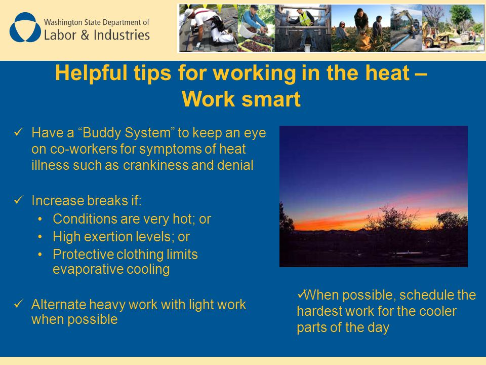 Helpful tips for working in the heat – Work smart