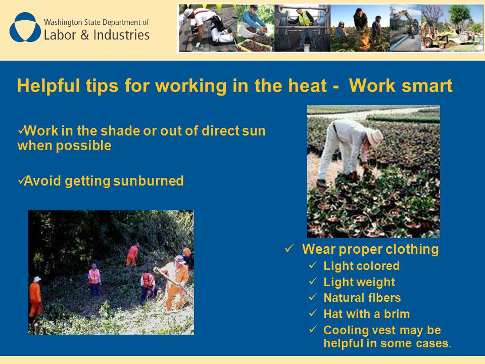 Helpful tips for working in the heat - Work smart