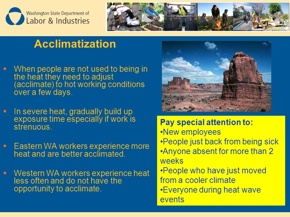 Acclimatization When people are not used to being in the heat they need to adjust (acclimate) to hot working conditions over a few days.