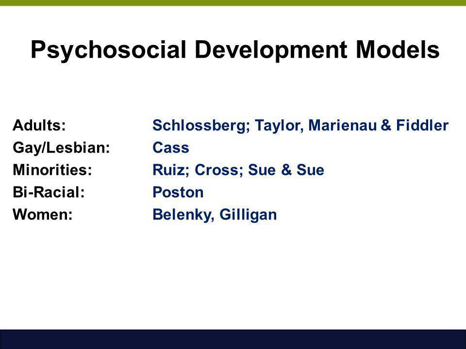 Psychosocial Development Models