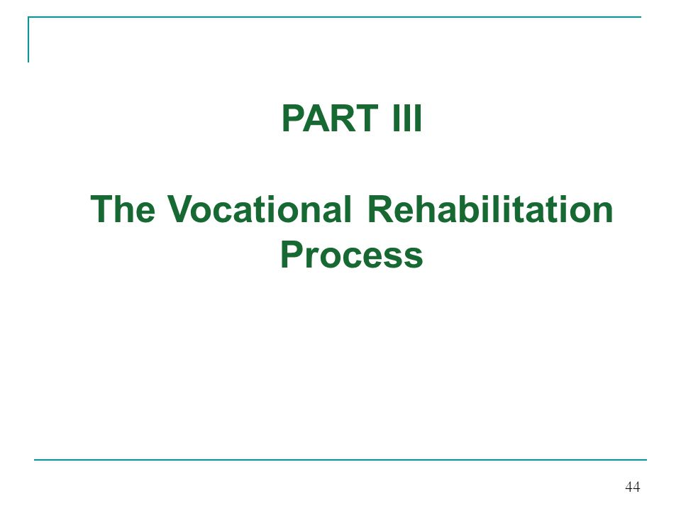 The Vocational Rehabilitation Process