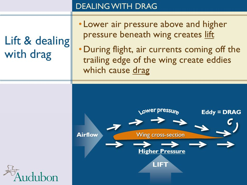 Lift & dealing with drag