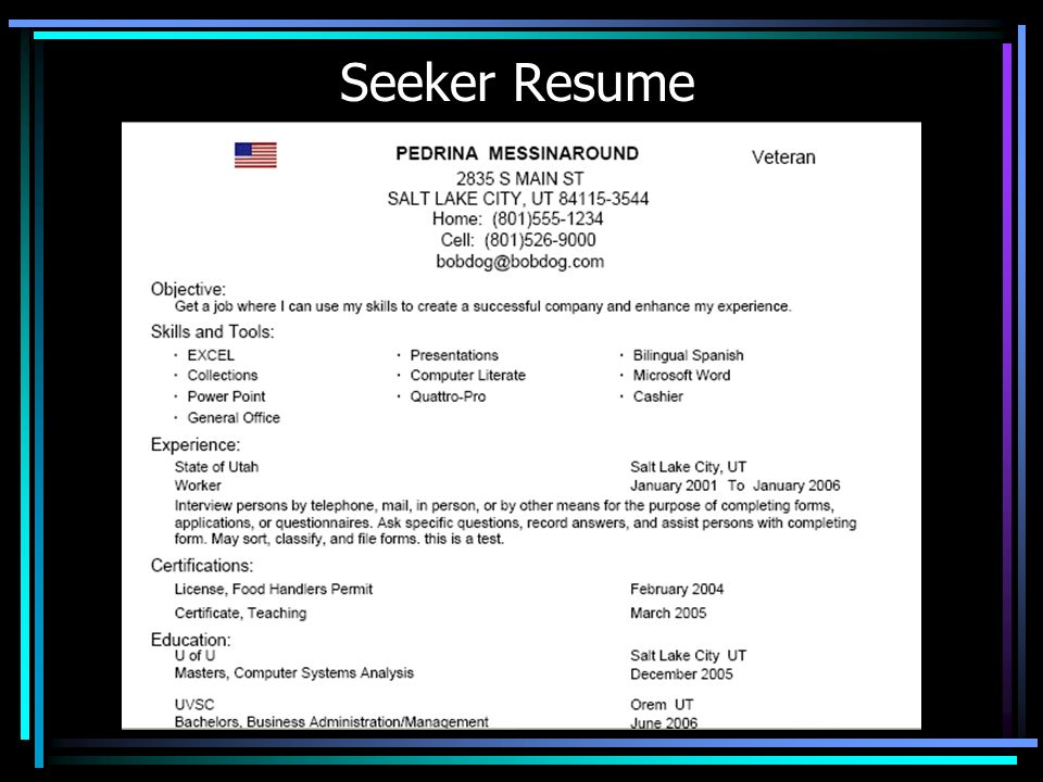 Seeker Resume