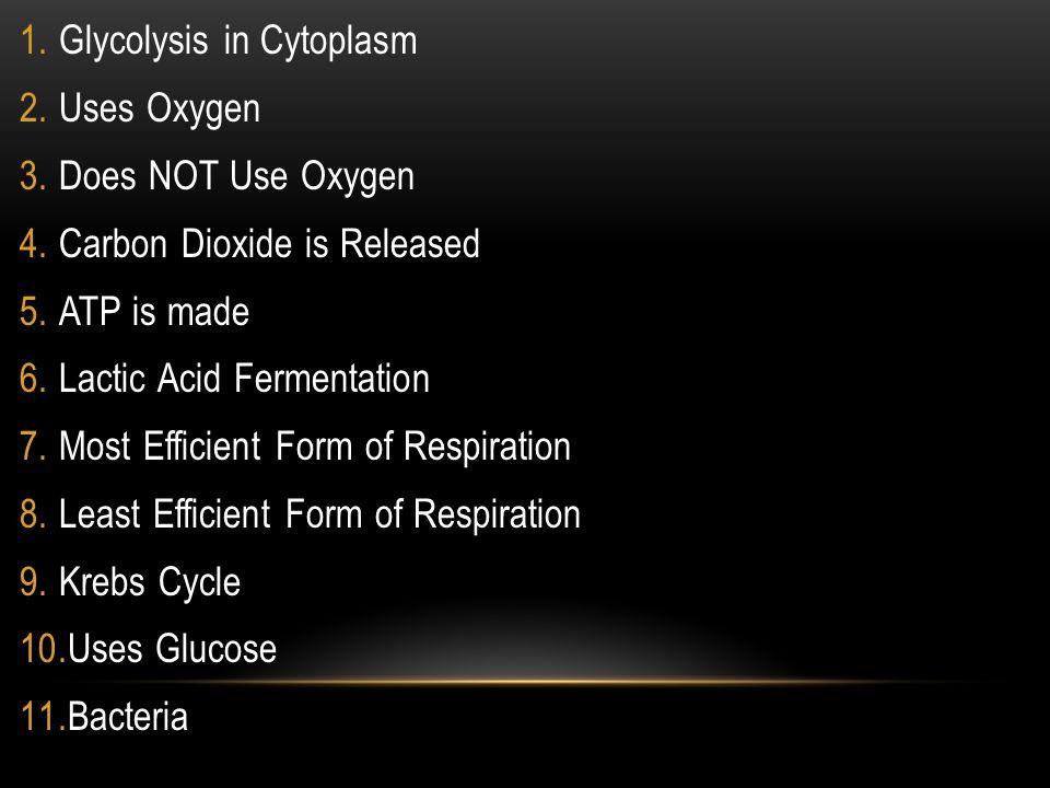 Glycolysis in Cytoplasm