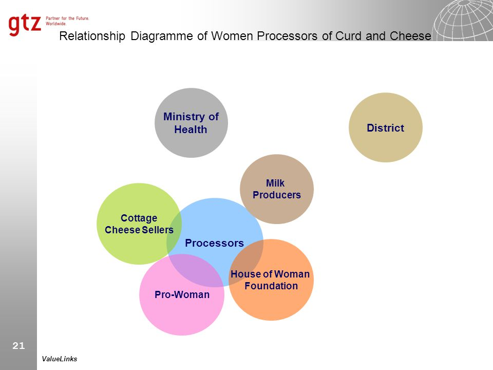 Relationship Diagramme of Women Processors of Curd and Cheese