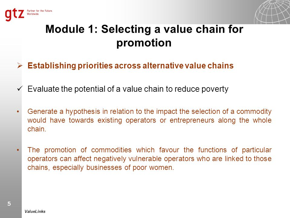Module 1: Selecting a value chain for promotion