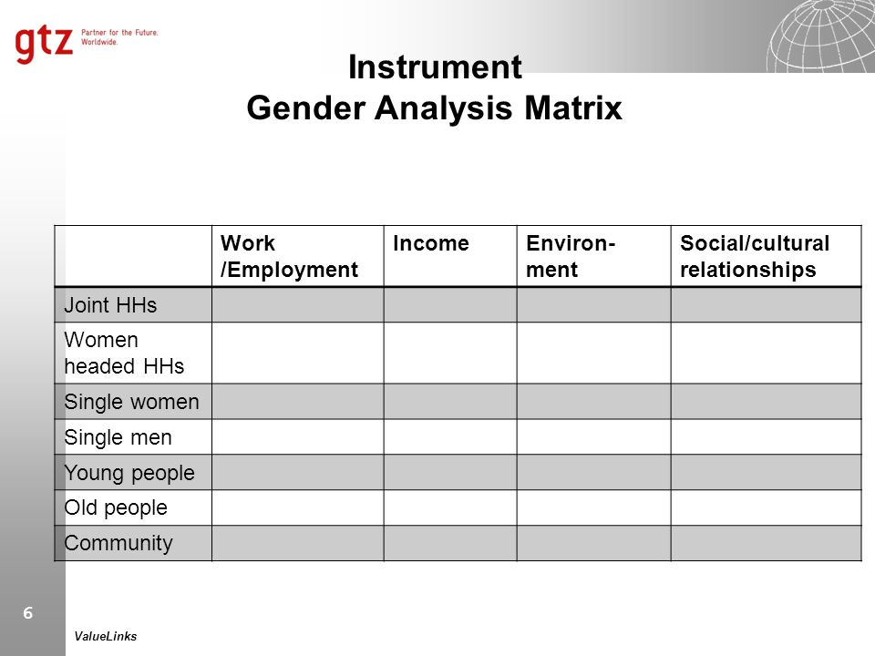Instrument Gender Analysis Matrix