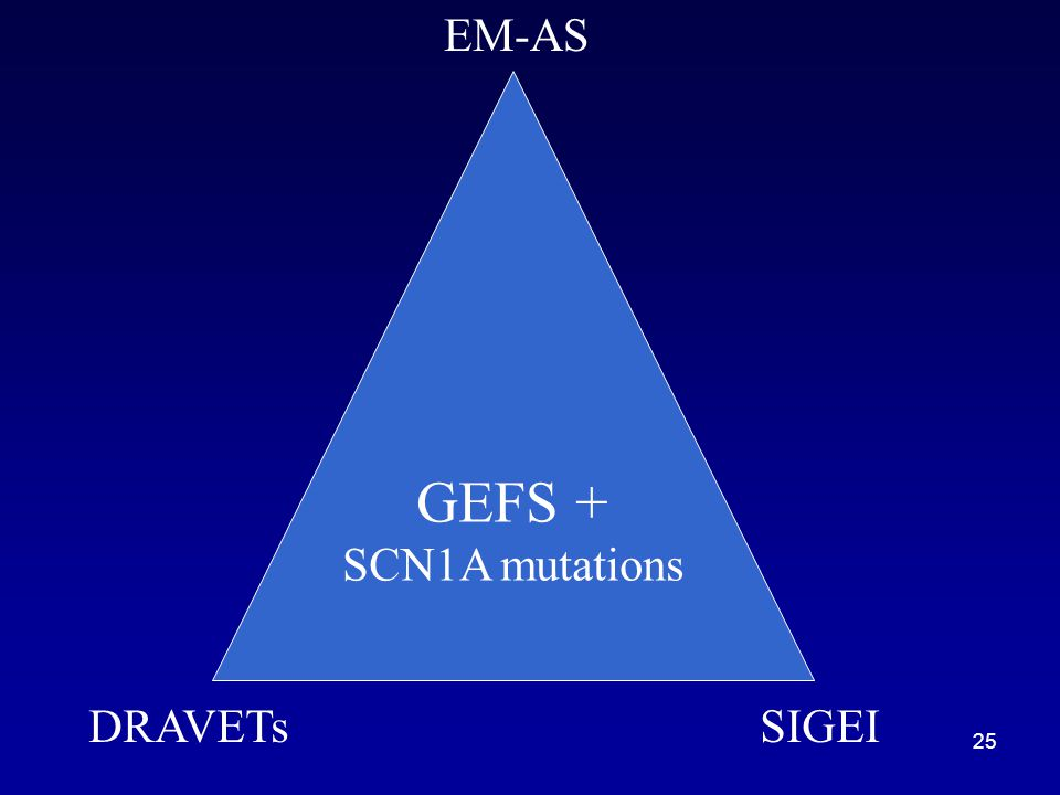 EM-AS GEFS + SCN1A mutations DRAVETs SIGEI