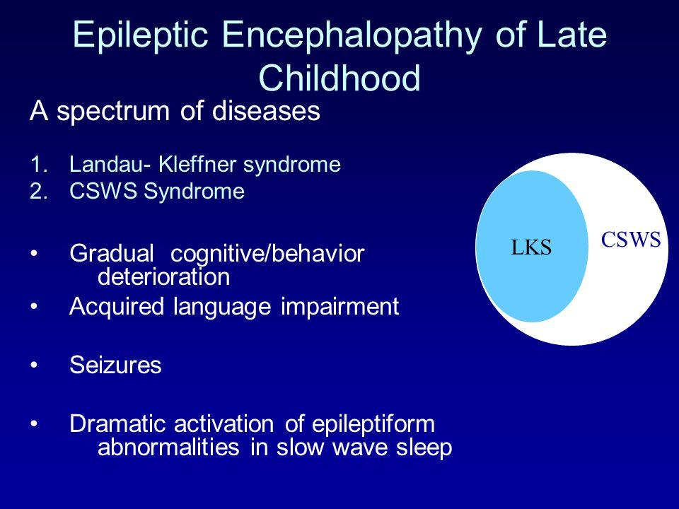 Epileptic Encephalopathy of Late Childhood