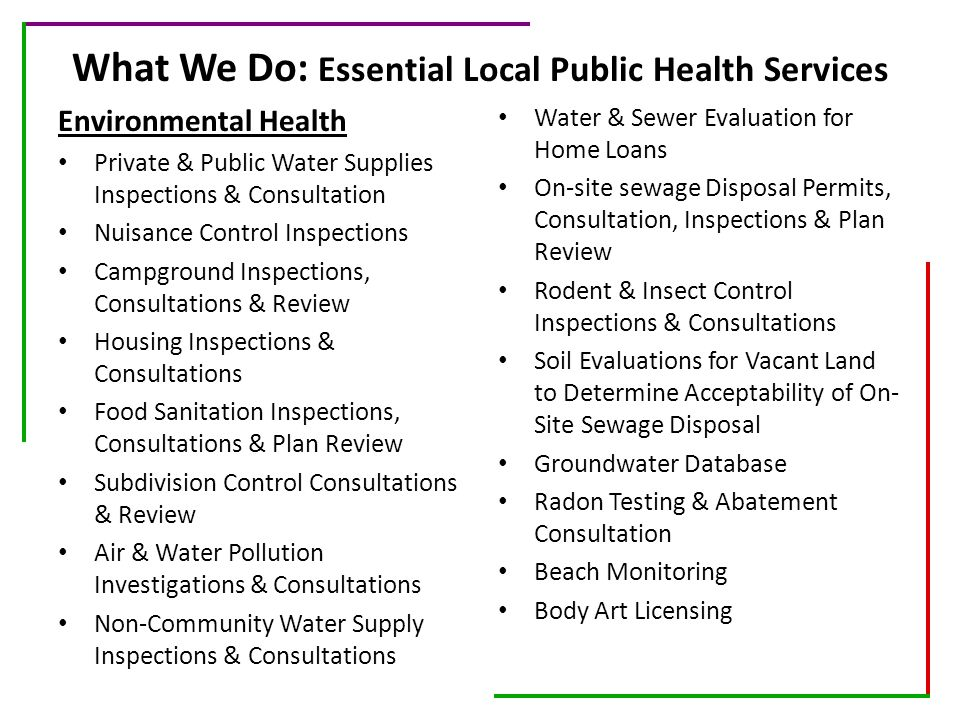 What We Do: Essential Local Public Health Services