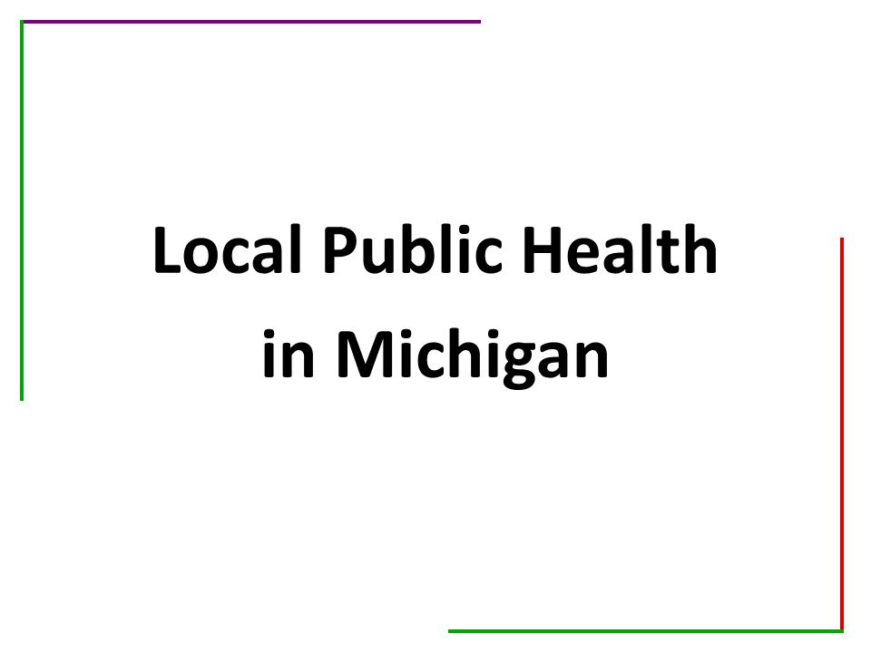 Local Public Health in Michigan
