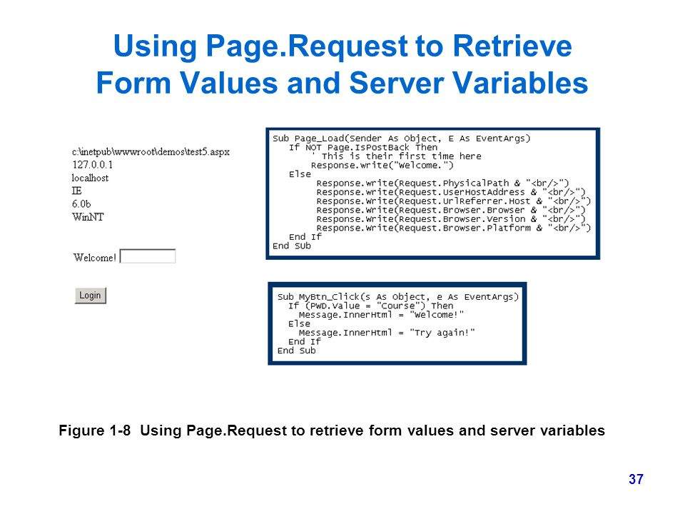 Using Page.Request to Retrieve Form Values and Server Variables