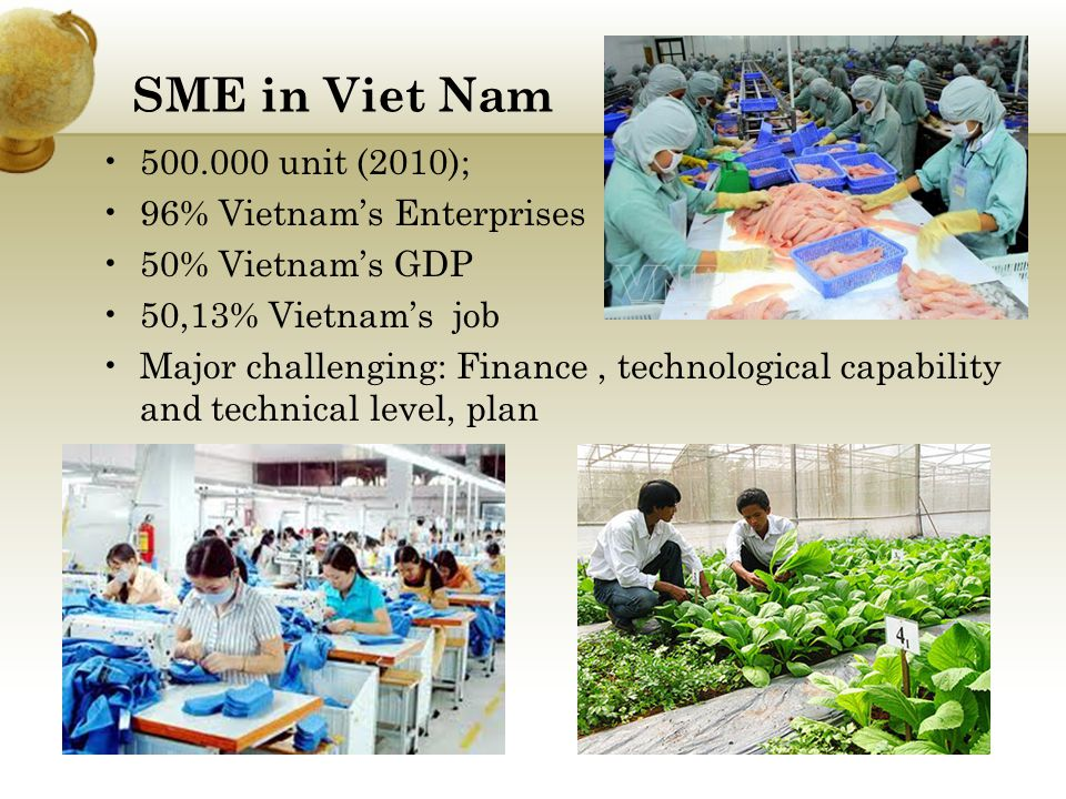 SME in Viet Nam 500.000 unit (2010); 96% Vietnam's Enterprises