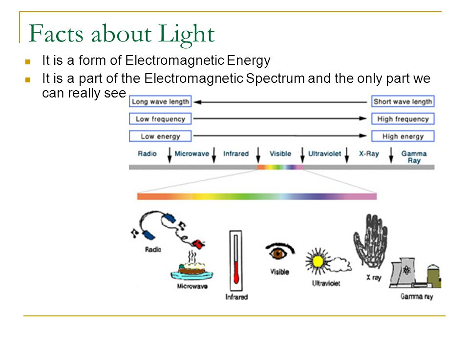 Facts about Light It is a form of Electromagnetic Energy