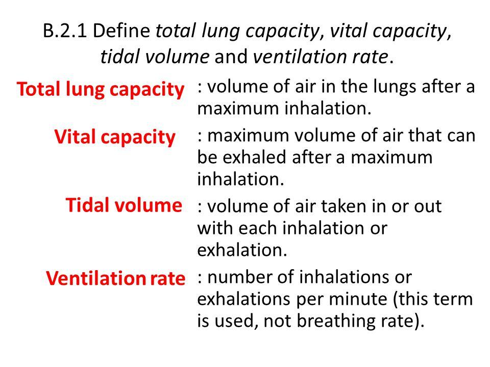 B.2.1 Define total lung capacity, vital capacity, tidal volume and ventilation rate.