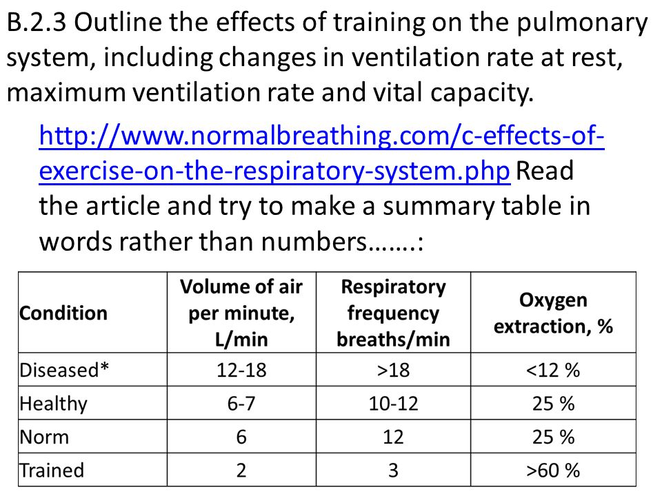 B.2.3 Outline the effects of training on the pulmonary system, including changes in ventilation rate at rest, maximum ventilation rate and vital capacity.