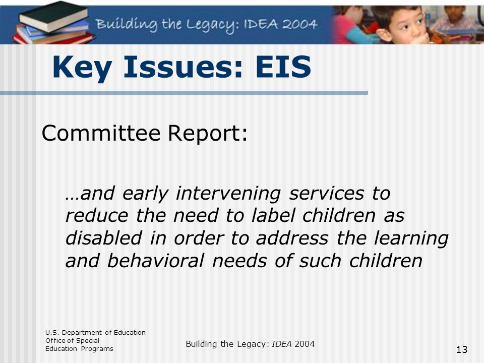 Key Issues: EIS Committee Report: