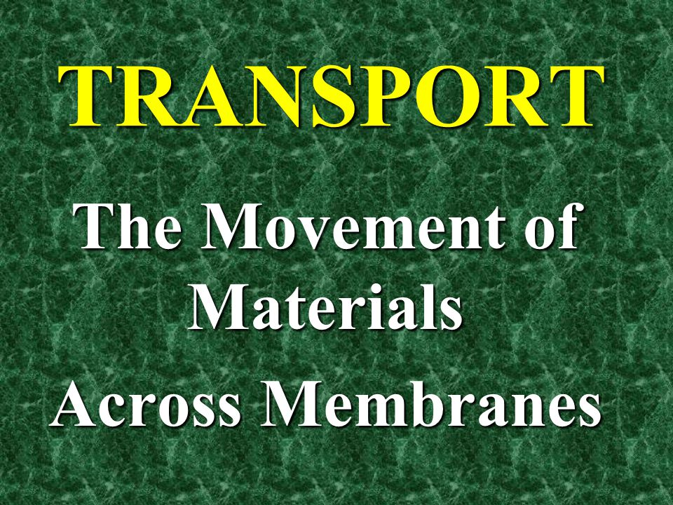 The Movement of Materials Across Membranes