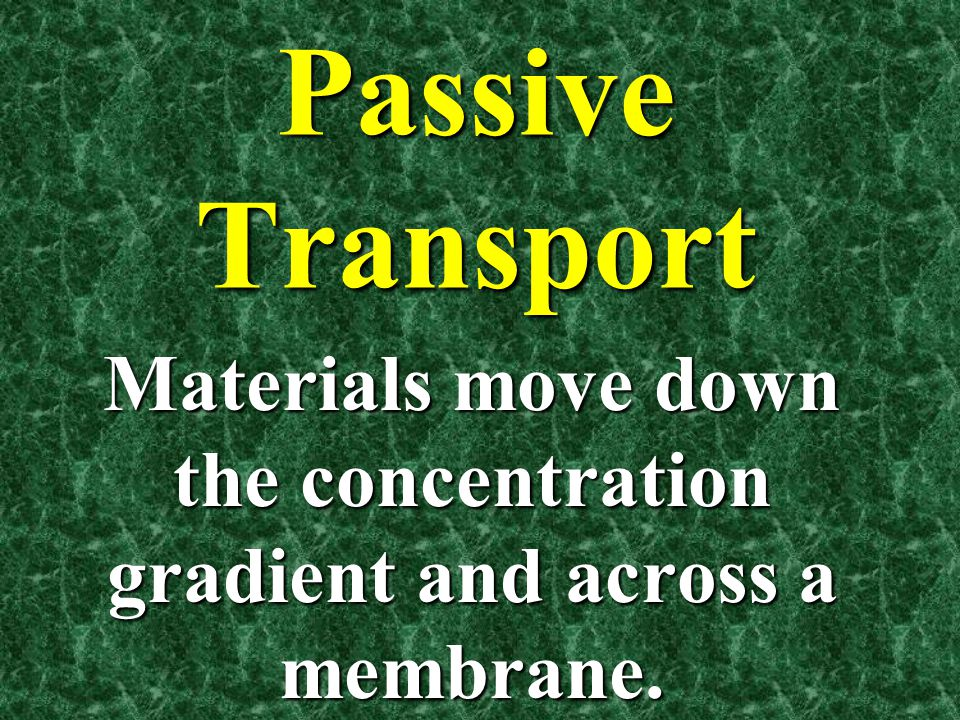 Materials move down the concentration gradient and across a membrane.